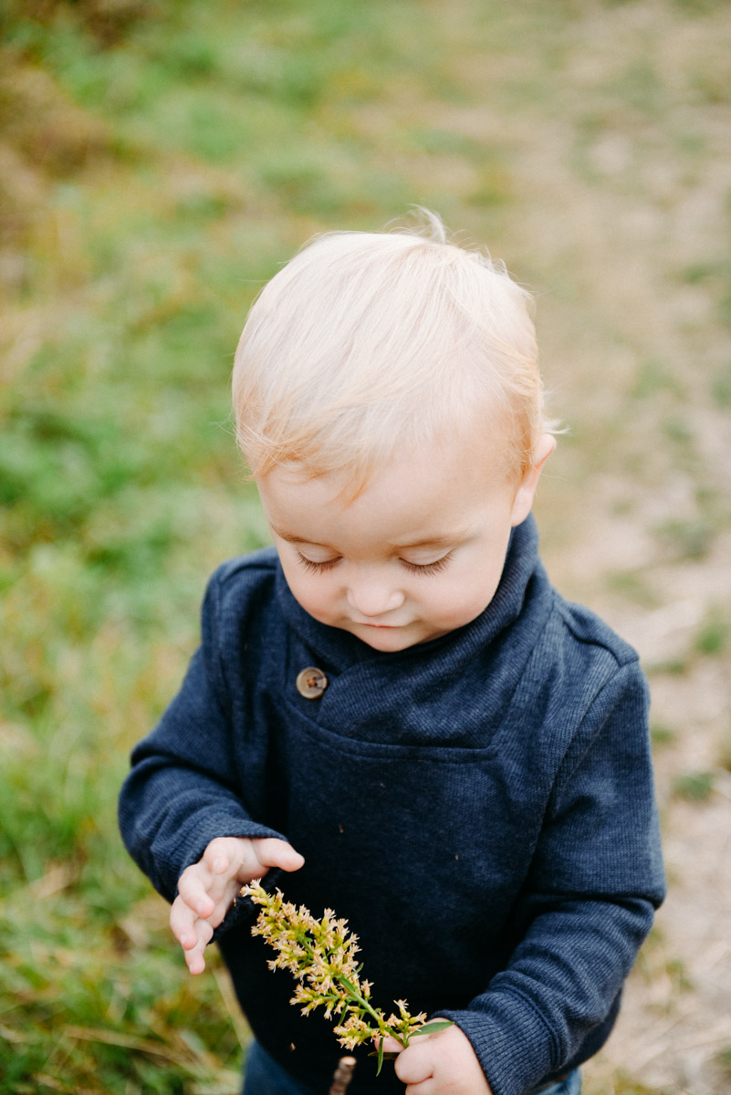 toddler playing with plant