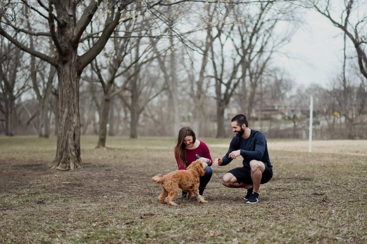 couple playing with dog before surprise proposal